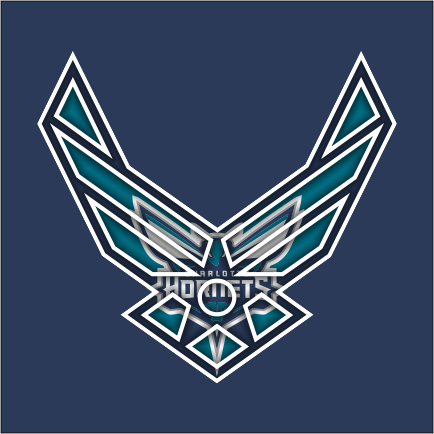 Airforce Charlotte Hornets Logo iron on sticker